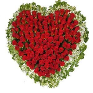 A BEAUTIFUL ARRANGEMENT OF 150 ROSES IN HEART SHAPE